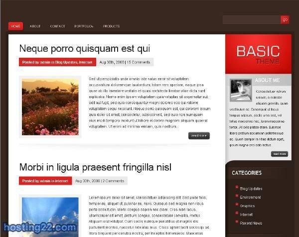 Basic - Elegant Premium WordPress Theme