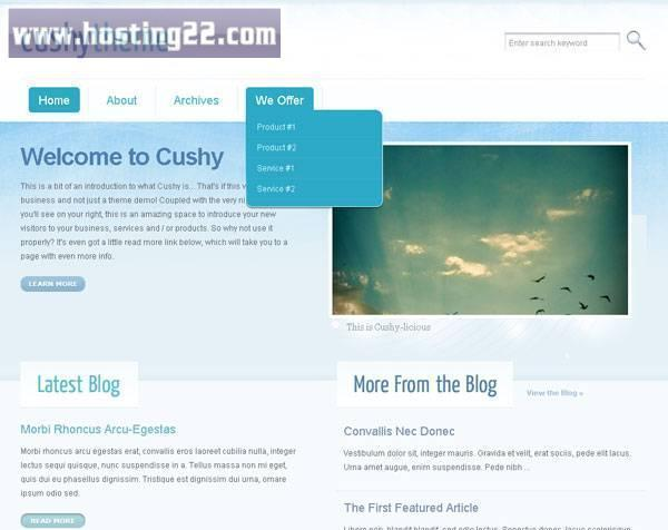 Cushy Premium Wordpress Themes
